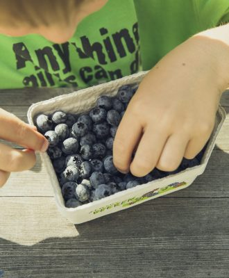blueberrykid